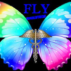 Fly Odontoiatri